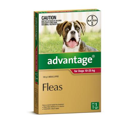 Advantage Flea Treatment for Dogs 10kg-25kg 1pk