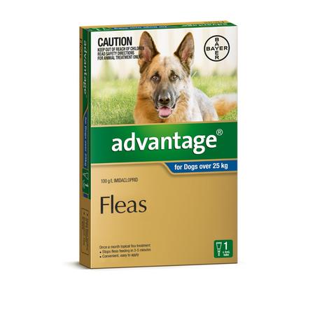 Advantage Flea Treatment for Dogs 25kg+ 1pk