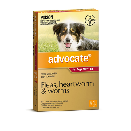 Advocate Flea and Worm Treatment for Dogs 10kg-25kg 1pk