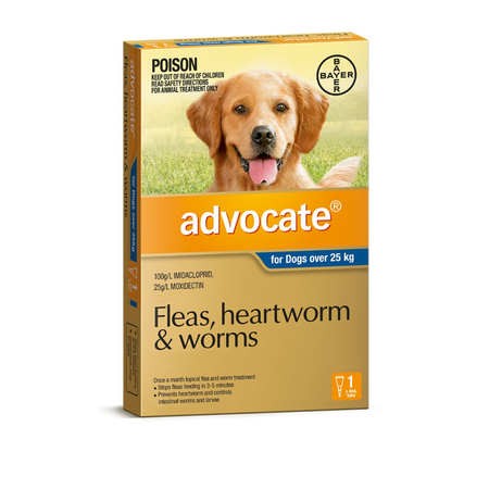 Advocate Flea and Worm Treatment for Dogs 25kg+ 1pk