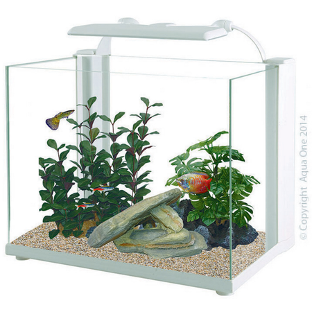 Aqua One Reflex 70 Glass Aquarium -White