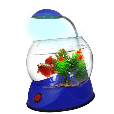 Aquatopia Betta Bowl with Light Blue