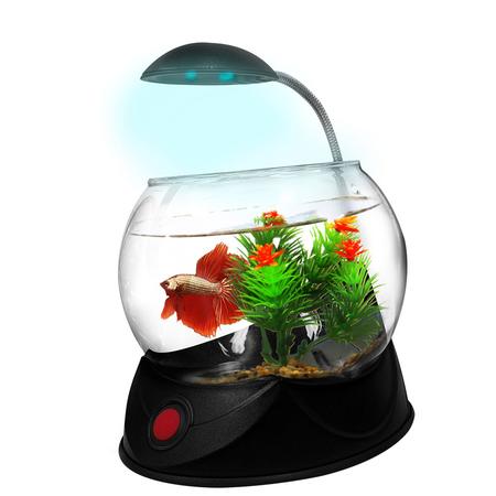 Aquatopia - Betta Bowl with Light