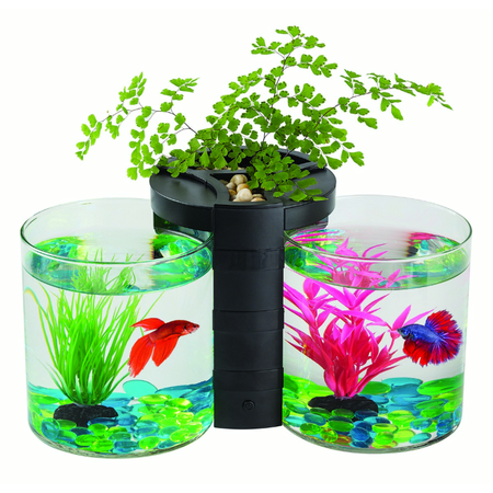 Blue Planet Betta Planter Twin Black