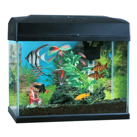 Blue Planet Classic Aquarium Fish Tank  40L