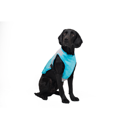Buddy & Belle Cooling Vest Small