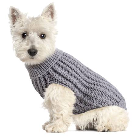 DGG Chunky Cable Dog Jumper Grey XS