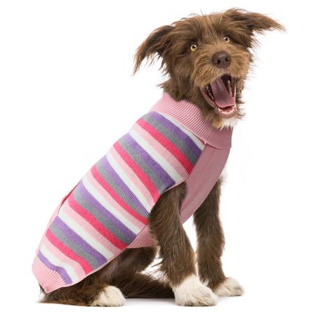 DGG Multi Striped Dog Jumper Pinks XS
