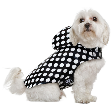 DGG Polka Dot Black Dog Rain Coat Medium (37cm)