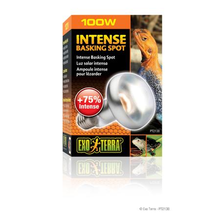 Exo Terra Basking Spot Lamp - 75 watt