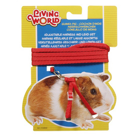 Living World Guinea Pig Harness and Lead Set Red