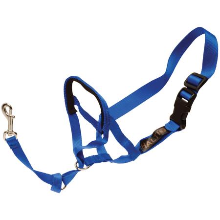 Petlife Halti Non Pull Head Collar fo Dogs Blue X Small