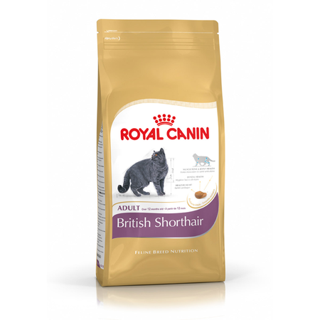 Royal Canin Adult British Shorthair Dry Cat Food  4kg