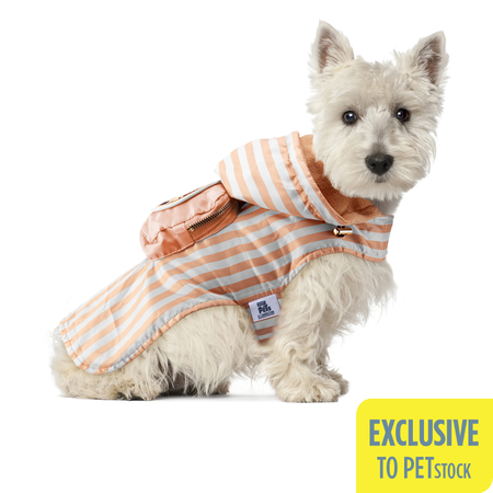 The Secret Life Of Pets Gidget Light Weight Dog Coat (Xsmall-Small)
