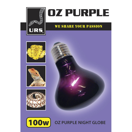 URS Oz Purple Night Globe  100 Watt
