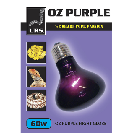 URS Oz Purple Night Globe  60 Watt