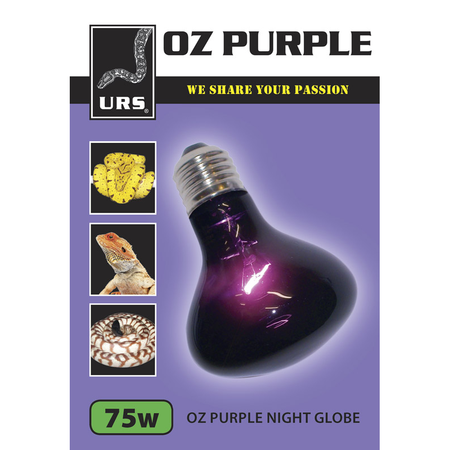 URS Oz Purple Night Globe  75 Watt