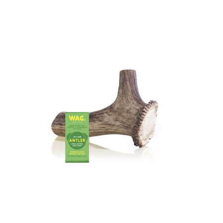 Watch and Grow Whole Deer Antler Naturally Shed Long Lasting Dog Treat  Medium