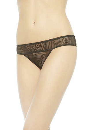 DAPHNE Brazilian briefs