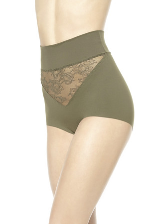 SHAPE-ALLURE HIGH-WAISTED BRIEFS