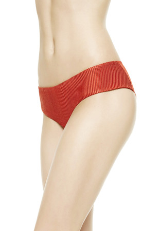 TULLE NERVURES High-waisted Briefs