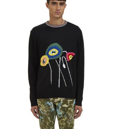 Intarsia Knit Crew Neck Sweater