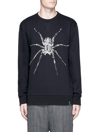 Spider embroidered sweatshirt