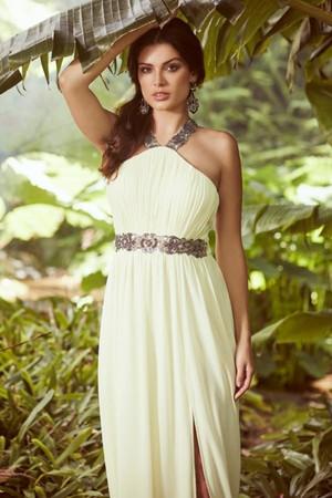 Lemon Embellished Exposed Back Maxi Dress