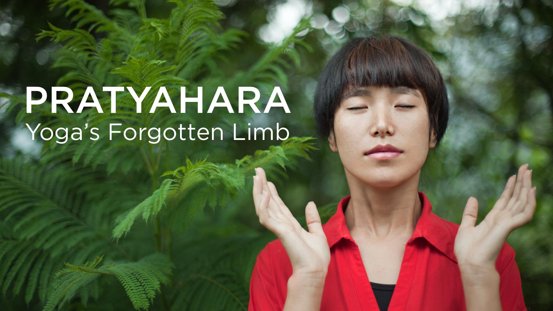 Pratyahara Yogas Forgotten Limb