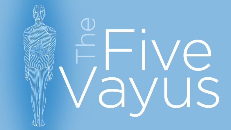 The 5 Prana Vayus Chart