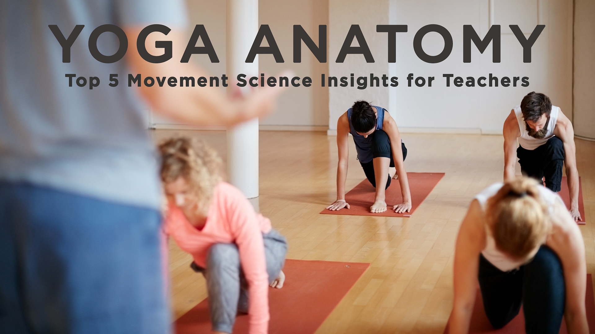 Yoga Anatomy: Top 5 Movement Science Insights for Teachers