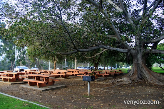 BBQ Pits Picnic Tables West At Cheviot Hills Recreation Center - Picnic table los angeles