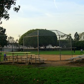 Softball Fields at Blanco Park