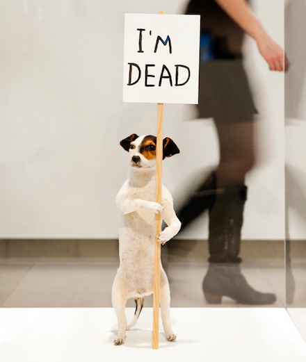 "David Shrigley, ""I'm Dead"" (2010)"