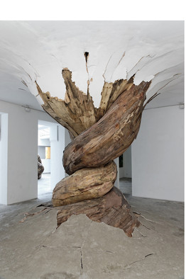 Henrique Oliveira's 2011 'Desnatureza' at Vallois gallery