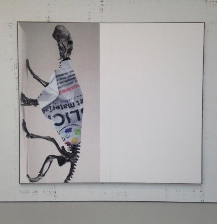 Michael Riedel, Untitled (Art Material_Lycaenops 90).  2015