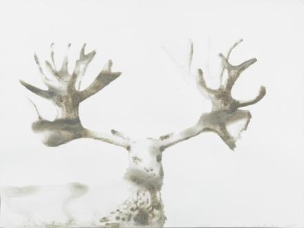 Alexis Rockman, Cervid Cervacles (Jacob Riis Beach, Queens), (2015), via Salon 94