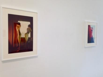Jimmy DeSana and Hanna Linden, Still Lives (Installation View)