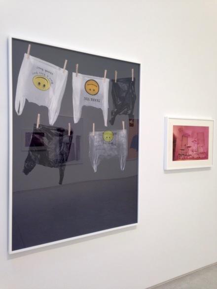 Jimmy DeSana and Hanna Liden, Still Lives (Installation View)