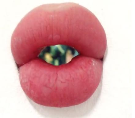 Mika Rottenberg, Lips (Study #3) (2016), via Art Observed