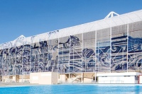 Adriana Varejão at Olympic Aquatics Center, via Art Newspaper