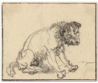 Rare Rembrandt drawing, via DW