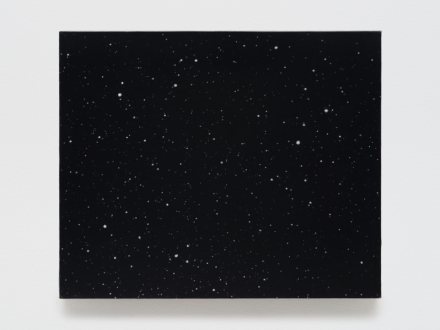 Vija Celmins, Night Sky #20 (2000-2016)