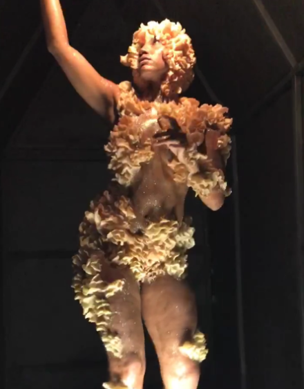 A performance to Barbara Tran's Homo Schizophyllum, via Art Observed