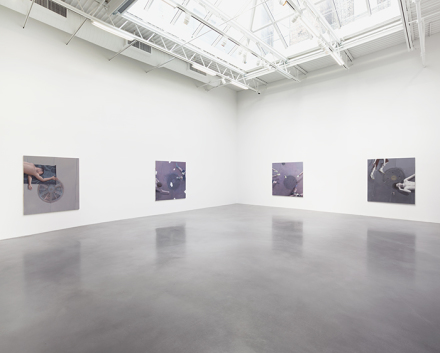 Thomas Eggerer, Todd (Installation View), all images courtesy the artist and Petzel Gallery