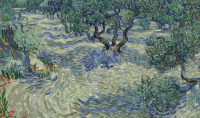 Van Gogh Olive Trees, via Guardian