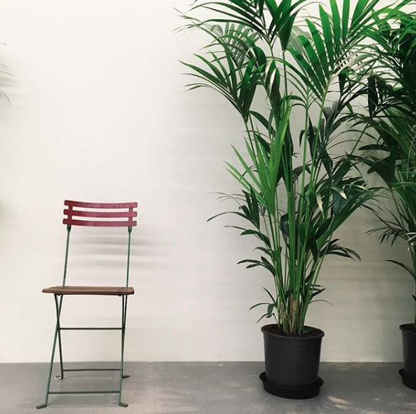 london marcel broodthaers un jardin d hiver at hauser wirth through november 18th 2017. Black Bedroom Furniture Sets. Home Design Ideas