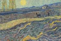 Van Gogh, via Barron's