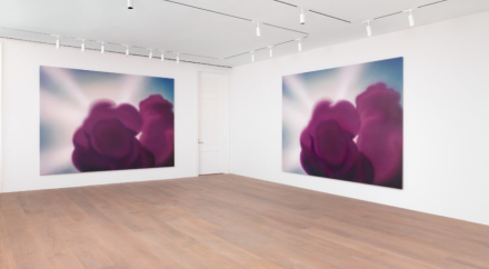 Dan Colen, Mailorder Mother Purgatory (Installation View), via Levy Gorvy