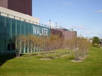 Walker Art Center, via Art News